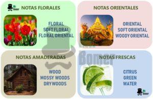 Familias aromaticas de perfumes según Michael Edwards