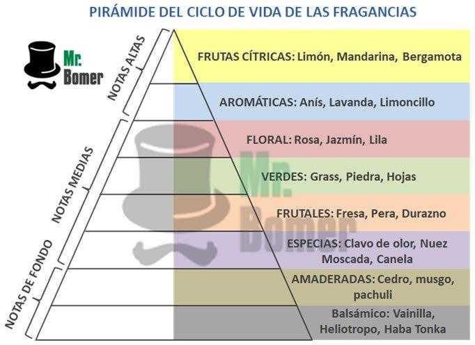 Pirámide del ciclo de vida de las Fragancias Colonias